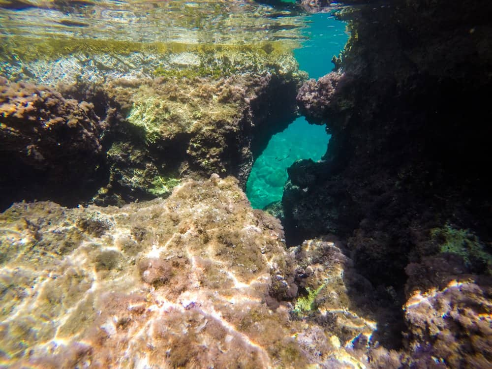 snorkeling through Caves.