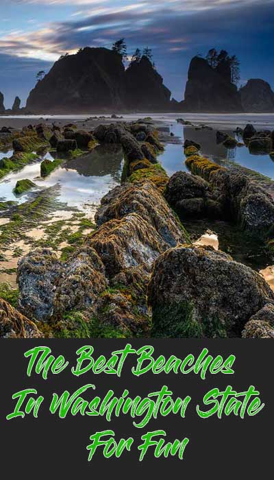 Pinterest Pin of Best Beaches in Washington State with a view of Shi Shi Beach